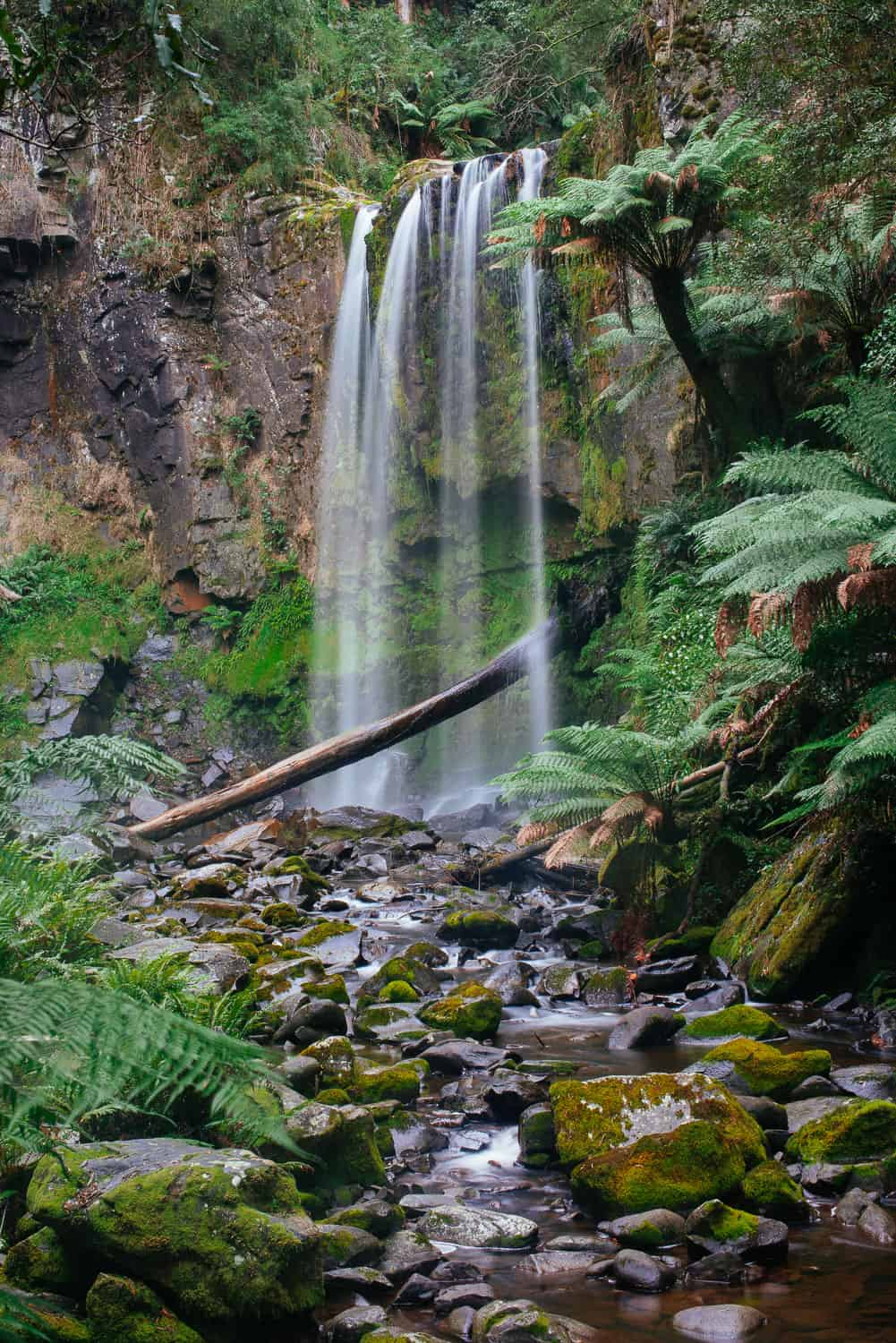 Houpetoun Falls in the Otways
