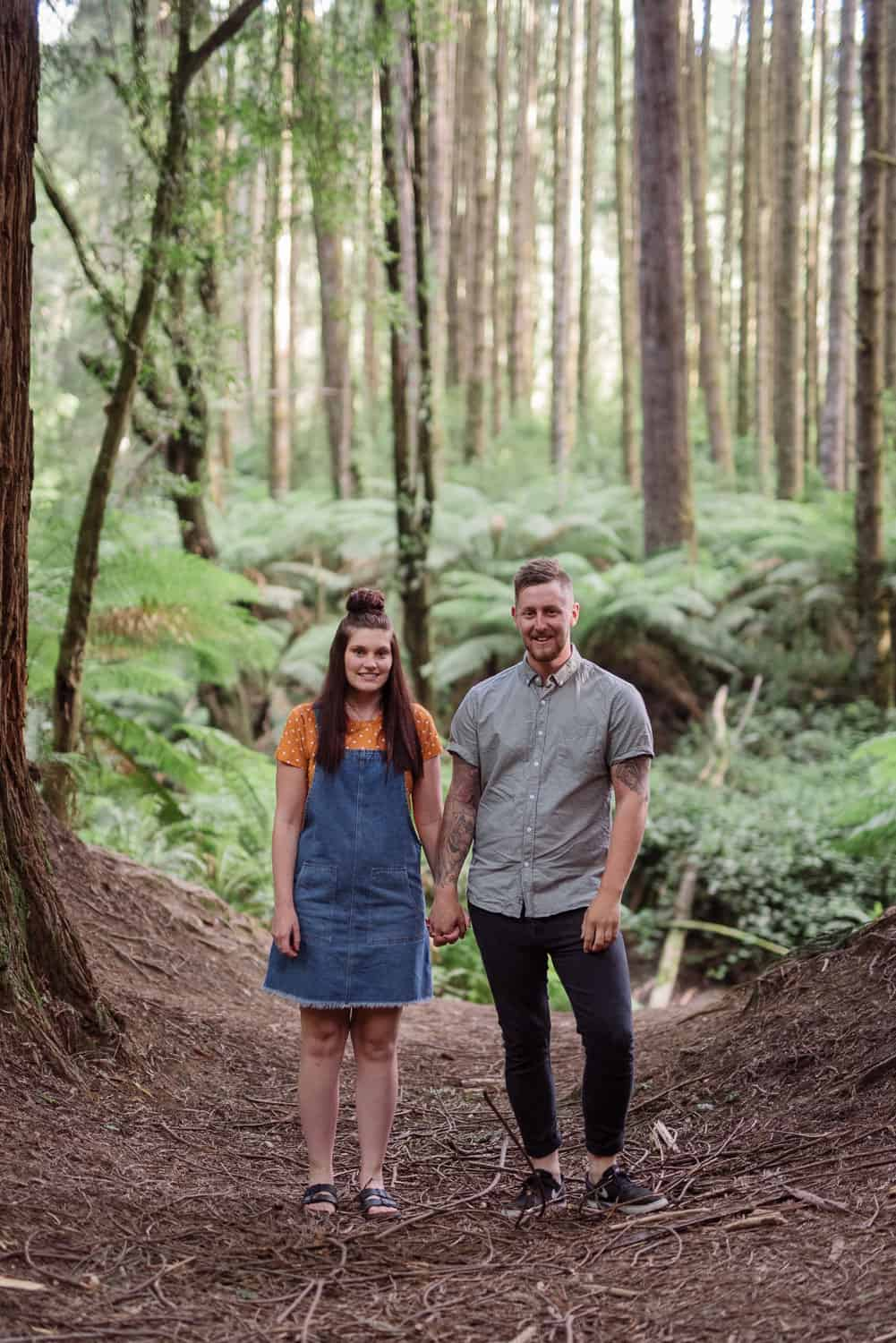 A redwood plantation portrait