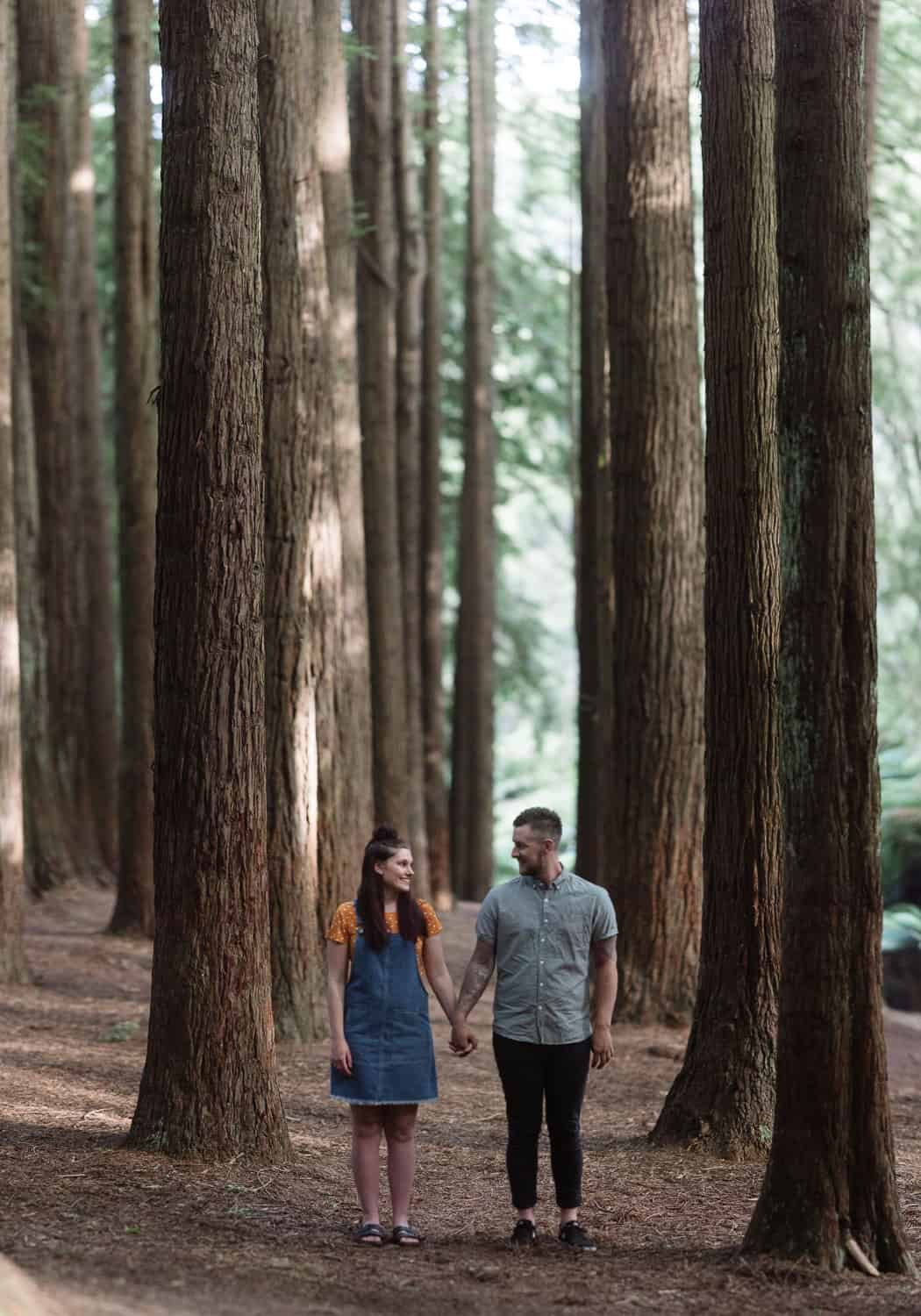 Couple enjoying their Redwoods engagement session