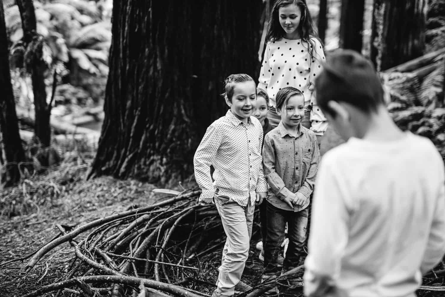 Children playing in the Redwood Plantation