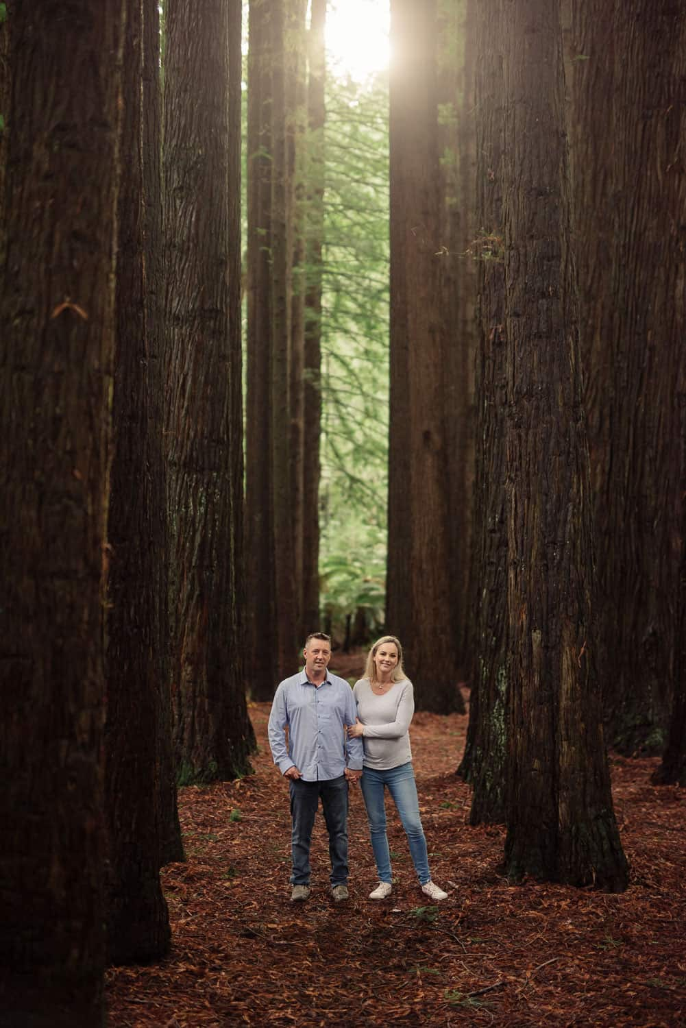 Redwoods engagement portrait