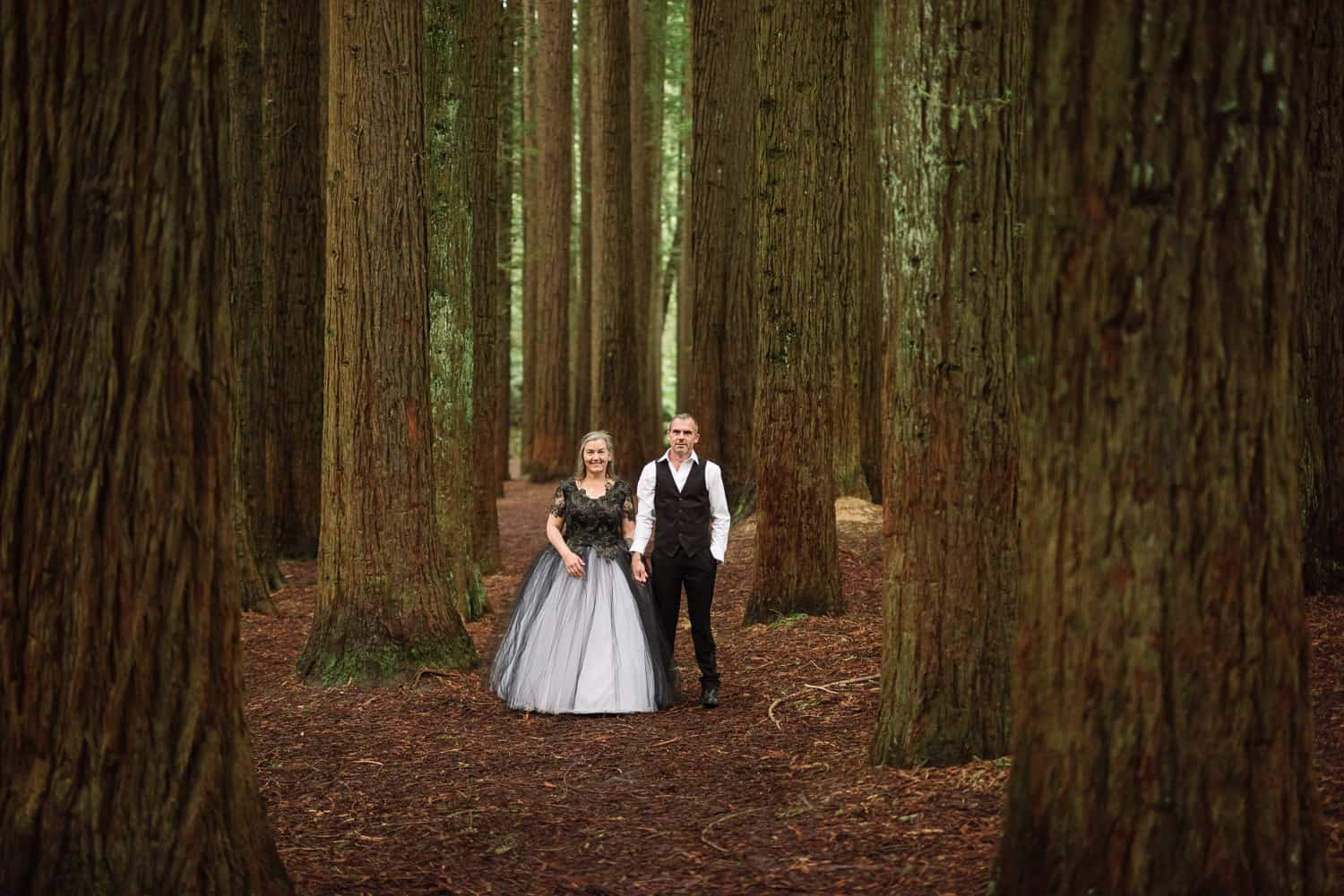 Bride and groom in the Otways Redwoods during their wedding portraits